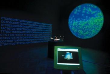 Paradigmi dell'arte biotech