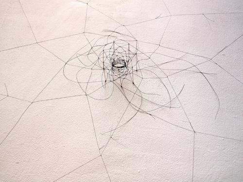 Christiane Löhr, particolare installazione 2010, crine di cavallo, aghi
