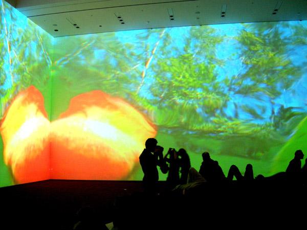 Installazione di Pipilotti Rist al MOMA, ph Stefania Carrozzini