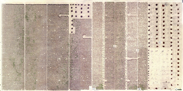 Marco Cadioli , Page #1, 2013  cm 100x50  digital print on Hahnemühle paper