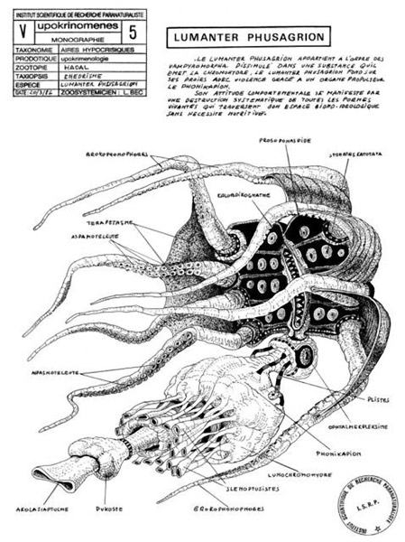 On Vampyroteuthis Infernalis, installazione