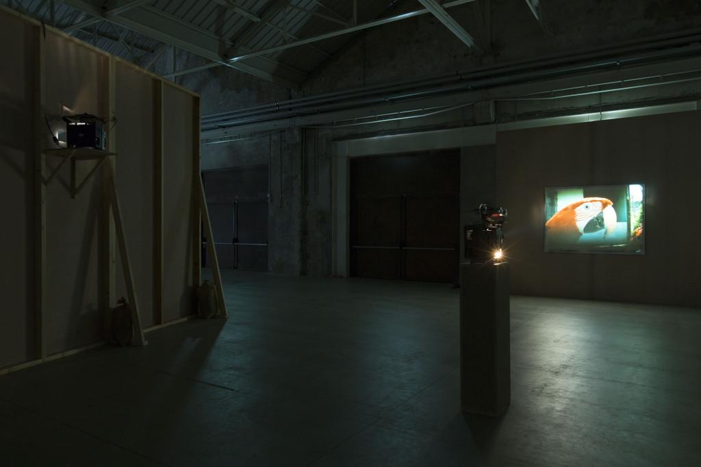 João Maria Gusmão + Pedro Paiva. Papagaio. Installation views Fondazione HangarBicocca, 2014. Photo by Agostino Osio. Courtesy Fondazione HangarBicocca