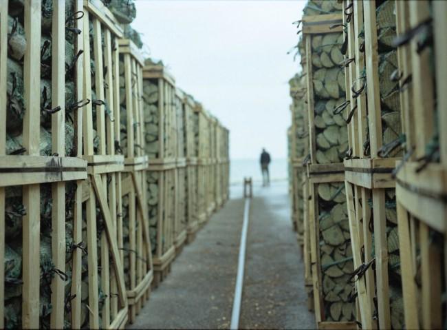 Margherita Morgantin, Codice Sorgente, 2004, video proiezione (durata: 4 minuti). Courtesy Galleria Continua, San Gimignano / Beijing / Les Moulins