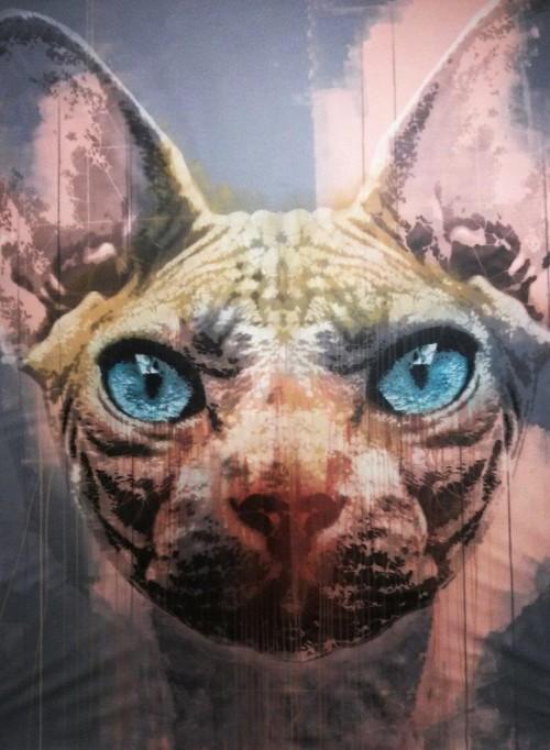 Orticanoodles, Spynkx, mix media, spray, acrilico, stencil cm 160x190, 2015