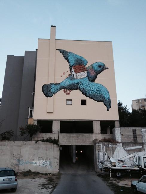 Ericailcane, 2014, Sassari © Ericailcane