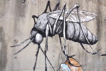 Street art in Sardegna