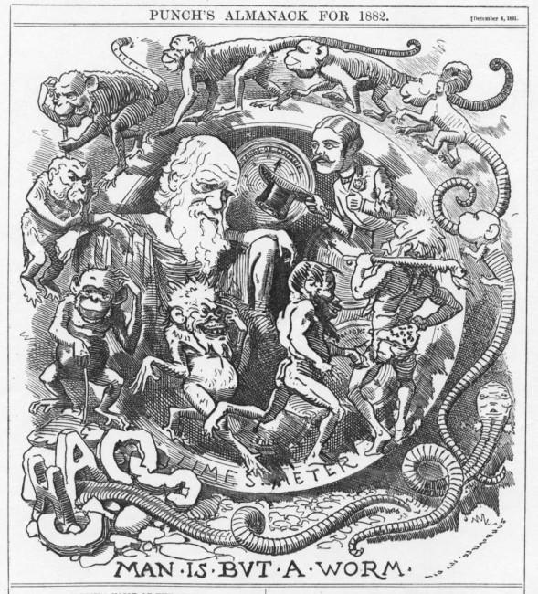 Una caricatura del 1882 sulla teoria dell'evoluzione di Darwin (courtesy Tulane University)