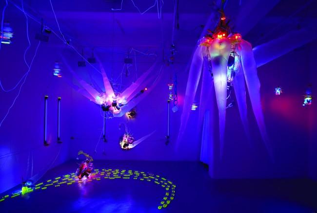 Shih Chieh Huang, EX-DD-06, installazione interattiva, 2006