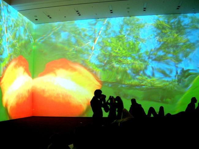 Installazione di Pippilotti Rist al MOMA, ph Stefania Carrozzini