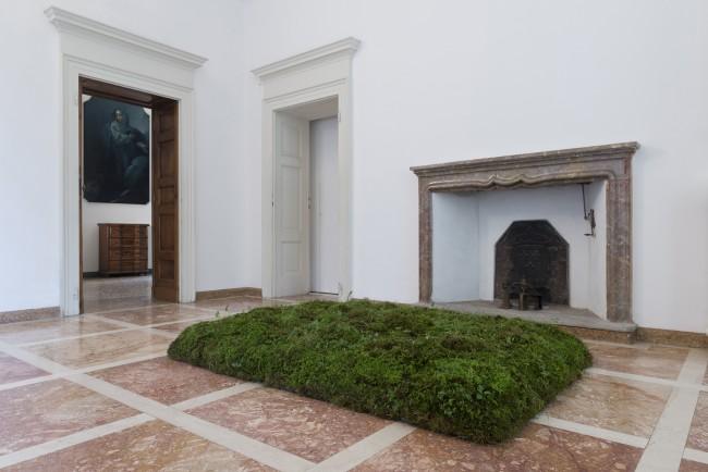 Meg Webster, Moss Bed, 1988. Muschio e terra . Museo Cantonale, Lugano. Donazione Panza , 25 x 147,3 x 203,2 cm © Sergio Tenderini