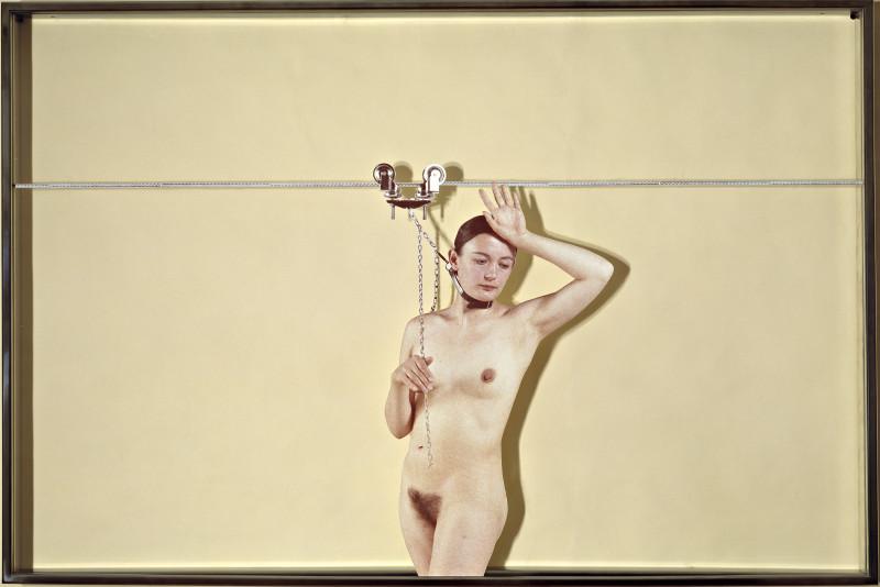 Vettor Pisani, 1972, Lo scorrevole, stampa fotografica, plexiglass, ferro, 80 x 120 x 6 cm, Collezione Maramotti, Reggio Emilia