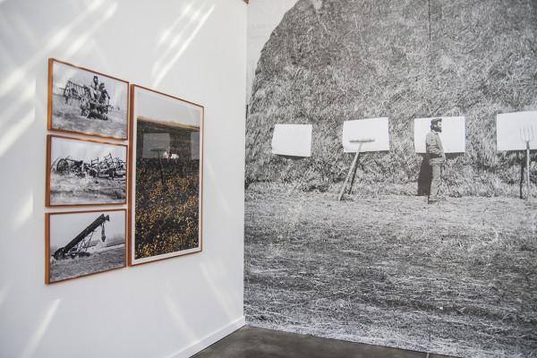 ecologEAST, veduta delle opere di ImreBukta, PAV – Parco Arte Vivente, Torino, 2016