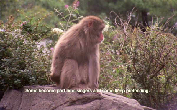 Basim Magdy Video-Still 2 aus ÒThe Everyday Ritual of Solitude Hatching MonkeysÓ, 2014