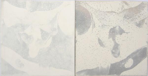 Paolo Meoni, Polaroid, polaroid su polaroid, 9x10 © 2013