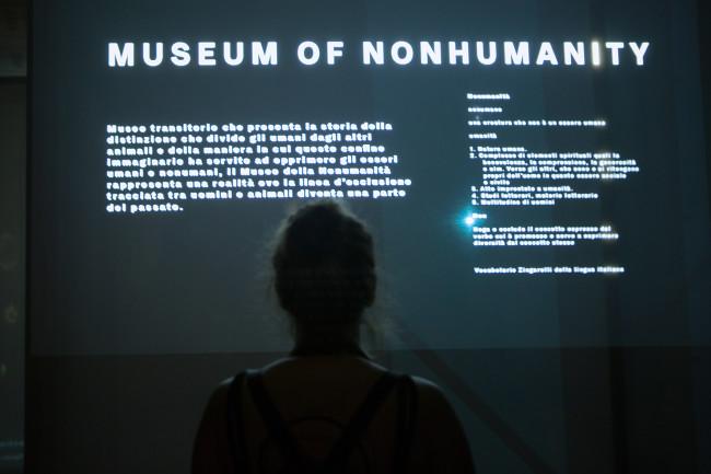 museumofnonhumanity-diane-ilariascarpa-lucatelleschi-santarcangelo_0685