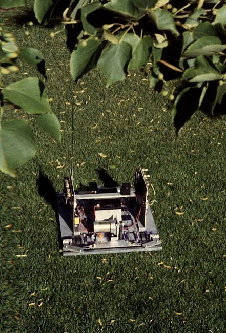 Telerobot Ornitorrinco di Eduardo Kac e Ed Bennett, 1989