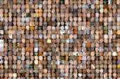 Social Network: condivisione, partecipazione, autonomia
