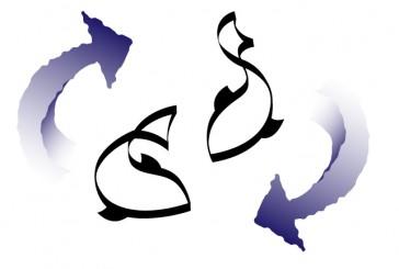 Il Pesce Viaggiatore * 4