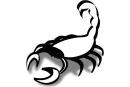 Scorpione walking on the Dark side 3*